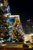 красивейший вектор валов иллюстрации рождества Стоковая Фотография RF