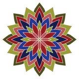 красивейший вектор цветка вектор иллюстрации элемента конструкции флористический Стоковое Фото