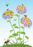красивейший вектор цветков Стоковые Изображения