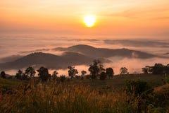 красивейший взгляд захода солнца Стоковое Изображение
