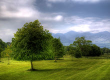 красивейший взгляд национального парка Керри co стоковые изображения