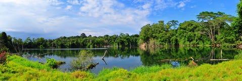 красивейший взгляд панорамы озера стоковое изображение rf