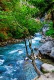 красивейший взгляд лета реки горы Река горы в th Стоковые Изображения