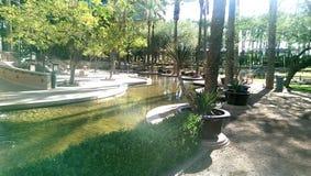 Красивейший двор Стоковая Фотография