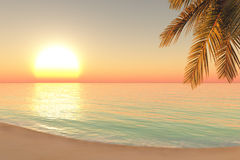 Восход солнца на пляже Стоковые Изображения RF