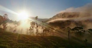 красивейший восход солнца Стоковые Изображения RF