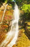 красивейший водопад стоковые фото