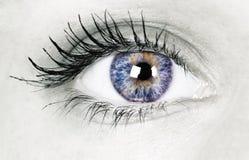 красивейший глаз Стоковое фото RF