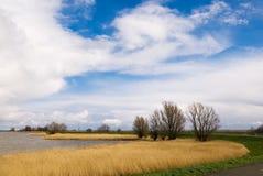 красивейший голландский ландшафт Стоковые Фотографии RF