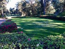 красивейший гольф курса Стоковое Изображение