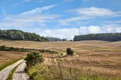 красивейший горизонт поля грязи кумулюса облаков над дорогой Стоковое Фото