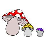 Отрава гриба Стоковые Фото