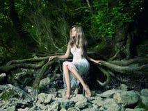 красивейший дождевый лес повелительницы стоковое фото