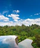 красивейший дождь бассеина пущи тропический Стоковые Изображения