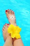 красивейший женский бассеин ног Стоковое Изображение