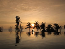 красивейший заход солнца бассеина безграничности облицовки Стоковое фото RF