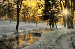 Красивейший заход солнца в пуще зимы, Румыния Стоковое Фото