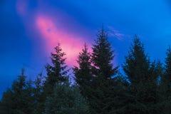 Красивейший заход солнца лета Стоковые Изображения