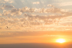 красивейший заход солнца моря Стоковое Изображение RF