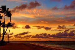 красивейший заход солнца тропический Стоковые Фотографии RF