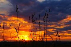 красивейший заход солнца Стоковые Изображения