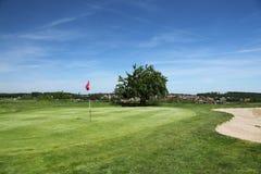 красивейший зеленый цвет гольфа курса стоковые изображения
