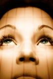 красивейший зеленый цвет девушки глаз Стоковое Изображение RF