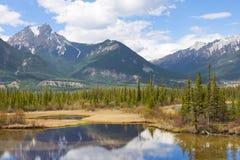 Красивейший канадский ландшафт с горами, озером и елями Стоковое фото RF