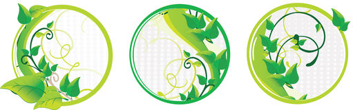 красивейший комплект зеленого цвета карточек Иллюстрация штока