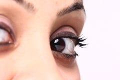 красивейший коричневый глаз Стоковые Изображения RF