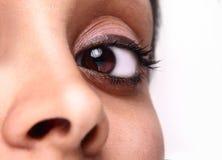 красивейший коричневый глаз Стоковые Фотографии RF