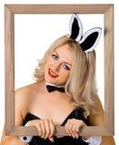 красивейший кролик девушки рамки Стоковая Фотография RF