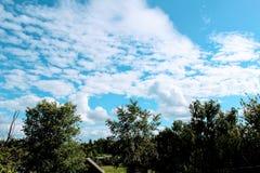 красивейший кумулюс облаков Стоковые Изображения RF