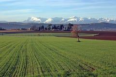 красивейший ландшафт итальянки сумрака Стоковая Фотография