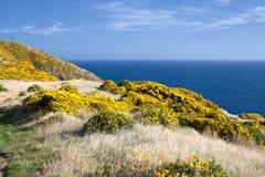 красивейший ландшафт Новая Зеландия Стоковые Фотографии RF