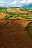 красивейший ландшафт yunnan фарфора 2 Стоковые Фото