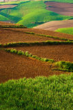 красивейший ландшафт yunnan фарфора 3 Стоковое фото RF