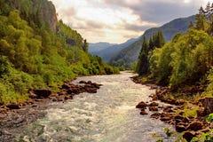красивейший норвежец ландшафта Стоковое фото RF