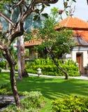Красивейший дом в джунглях Стоковое Изображение RF