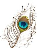 красивейший павлин пера Стоковая Фотография RF