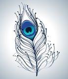 красивейший павлин пера Стоковые Изображения