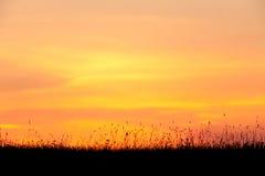 красивейший померанцовый заход солнца Стоковое Фото