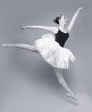 Красивейший портрет артиста балета Стоковое фото RF