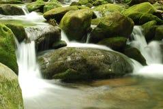 красивейший поток горы стоковое изображение rf