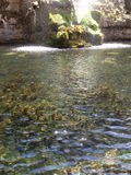 красивейший пруд Стоковое фото RF