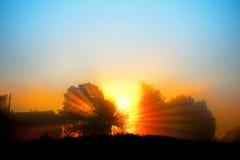 красивейший рассвет стоковые фото
