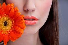 Красивейший рот womanâs стоковые изображения rf