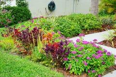 красивейший сад цветка Стоковые Изображения