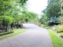 красивейший сад Зеленая лужайка в благоустраиванном официально саде Парк ar Стоковое Фото