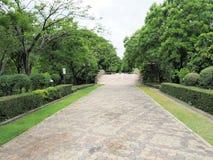 красивейший сад Зеленая лужайка в благоустраиванном официально саде Парк ar Стоковые Изображения RF
